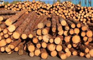 马来西亚木材协会将开设新办事处,预计下半年投入运营通风机